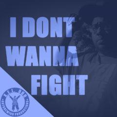 I Dont Wanna Fight